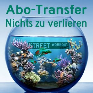 Street Workout Abo-Transfer
